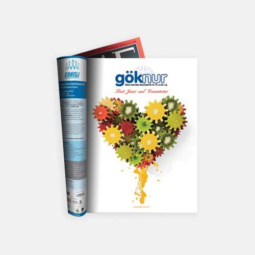 Göknur Gıda Meyve Konsantrasi Dergi Reklam Tasarımı